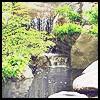 Japanese Garden~