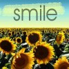 Sunflower Smile Icon
