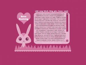 Love Bunny.