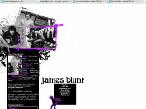 James Blunt (div)