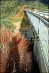 Sideway Bridge