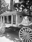 Disney's Haunted Mansion Carriage