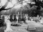 Cemetery/Shot 1
