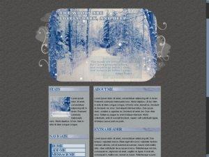 Snowy Woods - Robert Frost